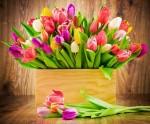 Восьмое Марта - Международный Женский День!!!